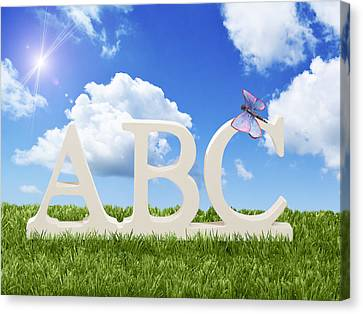 ABC Canvas Print by Amanda And Christopher Elwell