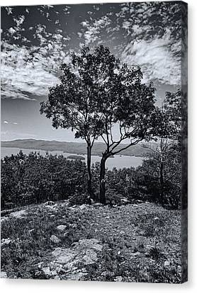 Above Lake George Black And White Canvas Print by Joshua House