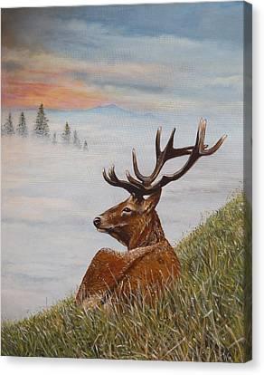 Above The Mist Canvas Print by Arie Van der Wijst