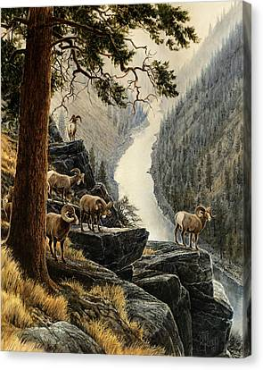 Above The River Canvas Print by Steve Spencer