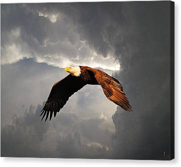 Above The Storm Canvas Print by Jai Johnson
