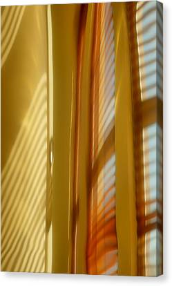 Abstract In Brass 5 - Historic Library Building - Omaha Nebr Canvas Print by Nikolyn McDonald