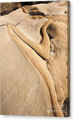 Abstract Stone Flow Canvas Print by Juan Romagosa