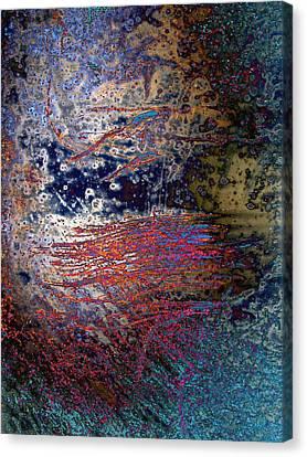 Absurd Canvas Print by Tom Druin