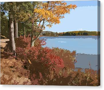 Acadia National Park Carriage Road Canvas Print by Elaine Plesser