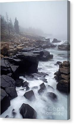 Acadia National Park, Maine Canvas Print by George Ranalli