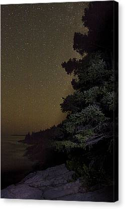 Acadia Stars 01 Canvas Print by Brent L Ander