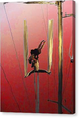 Acrobatic Aerial Artistry1 Canvas Print by Anne Mott