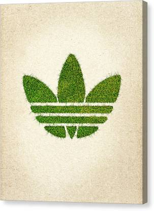 Adidas Grass Logo Canvas Print by Aged Pixel