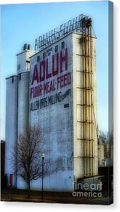 Adluh Flower Mill Canvas Print by Skip Willits