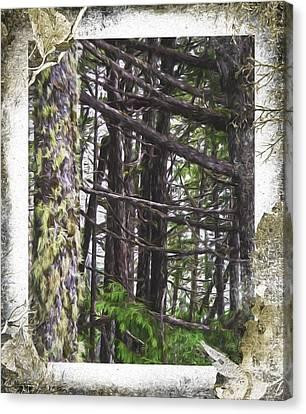 Advice From A Tree - Nature Art Canvas Print by Jordan Blackstone
