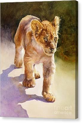 African Lion Cub Canvas Print by Bonnie Rinier
