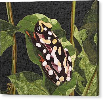 African Reed Frog Canvas Print by Lynda K Boardman