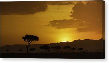 African Sunrise Canvas Print by Sebastian Musial