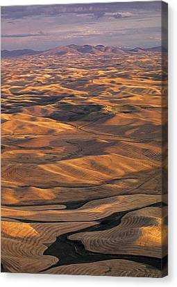 After Harvest From Steptoe Butte Canvas Print by Latah Trail Foundation