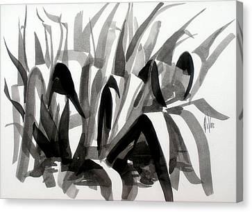 After The Iris Blooms Have Fallen Canvas Print by Kip DeVore