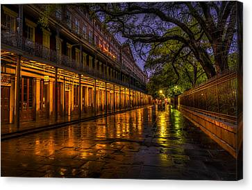 After The Rain Canvas Print by David Morefield