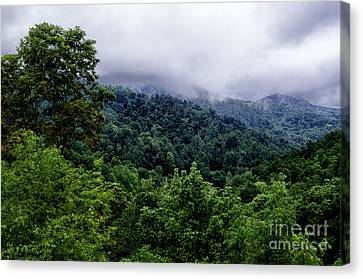 After The Storm Canvas Print by Thomas R Fletcher