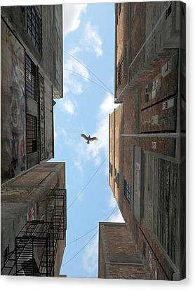 Afternoon Alley Canvas Print by Cynthia Decker
