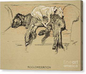Agglomeration Canvas Print by Cecil Charles Windsor Aldin