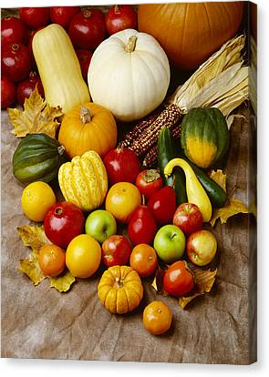 Agriculture - Autumn Fruits Canvas Print by Ed Young
