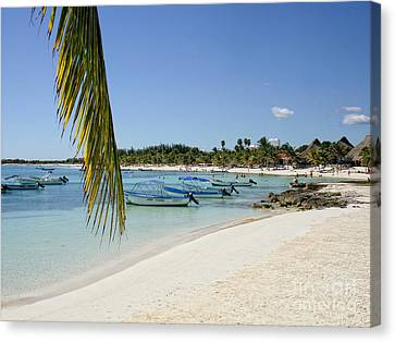 Akumal Beach - Yucatan - Mayan Riviera - Mexico Canvas Print by Renata Ratajczyk