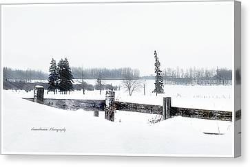 Alberta Winter Wonderland Canvas Print by Donna Brown