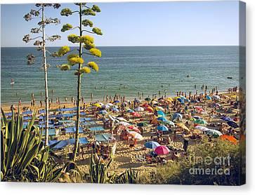 Algarve Beach Canvas Print by Carlos Caetano