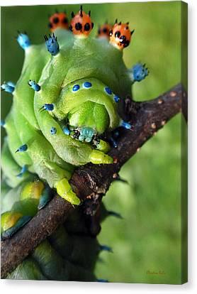 Alien Nature Cecropia Caterpillar Canvas Print by Christina Rollo