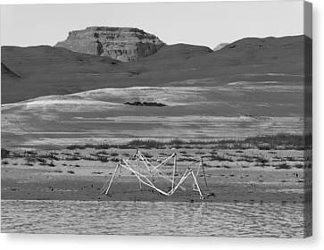 Alien Wreckage Bw - Lake Powell Canvas Print by Julie Niemela
