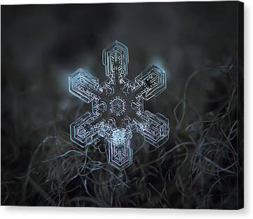 Snowflake Photo - Alioth Canvas Print by Alexey Kljatov