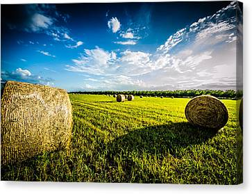 All American Hay Bales Canvas Print by David Morefield