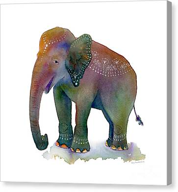 All Dressed Up Canvas Print by Amy Kirkpatrick