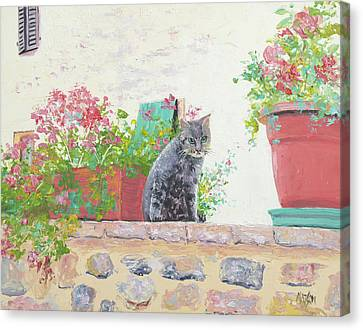 Alley Cat Canvas Print by Jan Matson