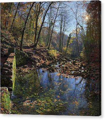 Allondon River Source Canvas Print by Patrick Jacquet