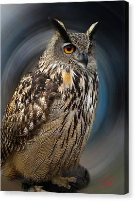 Almeria Wise Owl Living In Spain  Canvas Print by Colette V Hera  Guggenheim