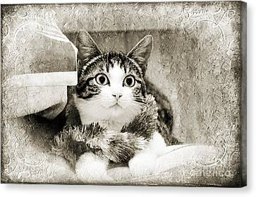 Aloha Kitty Painterly Canvas Print by Andee Design