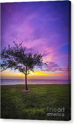 Alone At Sunset Canvas Print by Marvin Spates