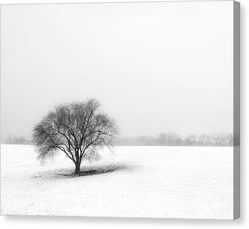 Alone Canvas Print by Don Spenner