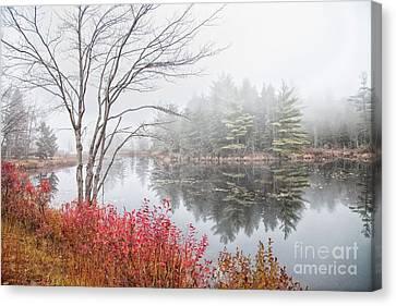 Along 119 Canvas Print by Sue OConnor