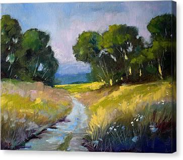 Along A Country Road Canvas Print by Nancy Merkle