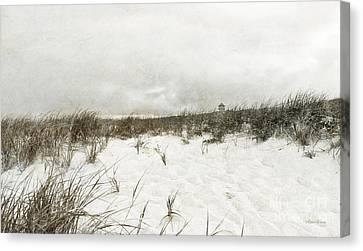 Along The Cape Cod National Seashore Canvas Print by Michelle Wiarda
