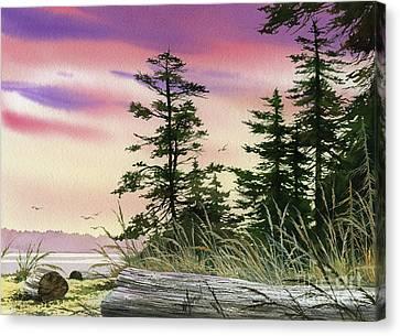 Along The Coast Canvas Print by James Williamson