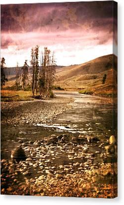 Along The Larmar River 2 Canvas Print by Marty Koch