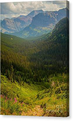 Along The Path To Iceburg Lake 19 Canvas Print by Natural Focal Point Photography