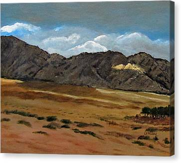 Along The Way To Eilat Canvas Print by Linda Feinberg