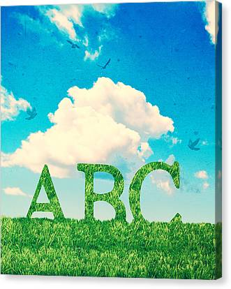Alphabet Letters In Grass Canvas Print by Amanda And Christopher Elwell