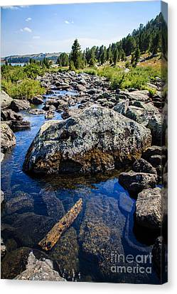 Alpine Stream Beartooth Mounain Range Canvas Print by Edward Fielding
