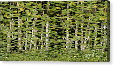 Altered Reflections Canvas Print by Howard Ferrier