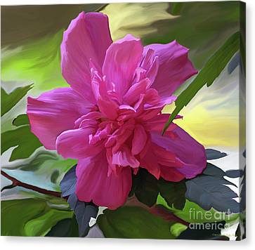 Althea Hibiscus I Canvas Print by Patricia Griffin Brett